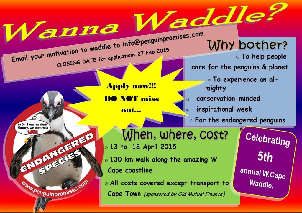waddle advert